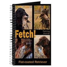 Flat-coated Retriever Training Journal