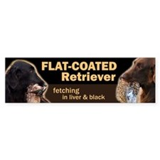 Flat-coated Retriever Bumper Car Sticker