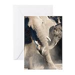 Elephant Dust Bath Greeting Cards (Pk of 10)