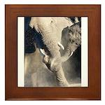 Elephant Dust Bath Framed Tile