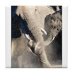 Elephant Dust Bath Tile Coaster