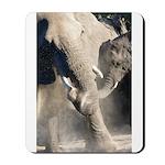 Elephant Dust Bath Mousepad