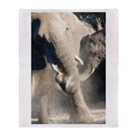 Elephant Dust Bath Throw Blanket
