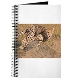 Cheetah Journals