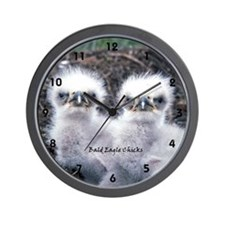 Bald Eagle Chicks :: Wall Clock
