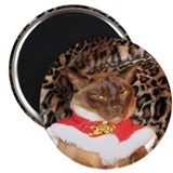 "FPG Xmas Cat II 2.25"" Magnet (10 pack)"