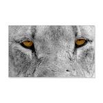 Lion Eyes 22x14 Wall Peel