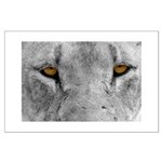 Lion Eyes Large Poster