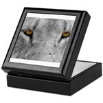 Lion Eyes Keepsake Box