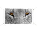 Lion Eyes Banner
