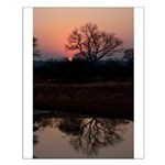 Lion Sands Sunset Small Poster