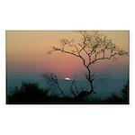 Phinda Sunset Sticker (Rectangle 50 pk)