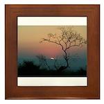 Phinda Sunset Framed Tile