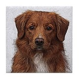 Cute Toller Tile Coaster