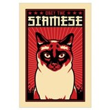 SIAMESE Cat Dictator