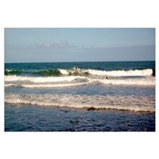 Surfers at Honoli'i Beach