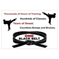 ONE Black Belt 1