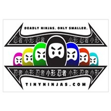 TINY NINJAS GROUP