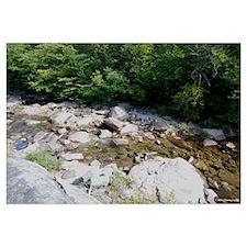 9X12 - Adirondack- Stream 2
