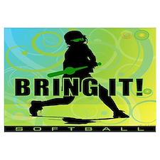 2011 Softball 102