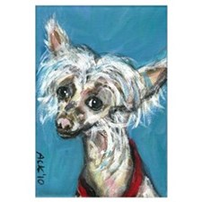 Portrait of a Chinese Crested