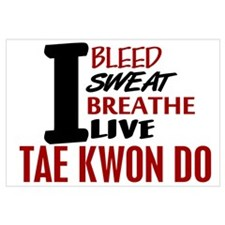 Bleed Sweat Breathe Tae Kwon Do
