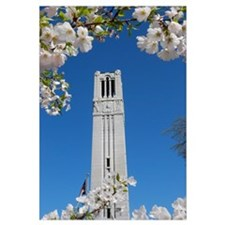 NC State Bell Tower Spring