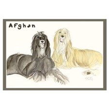 Afghan by Shawna Pauley