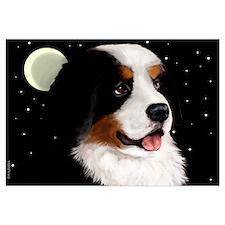 Bernese Mountain Dog Moon