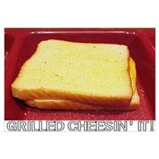 Grilled Cheesin' It!