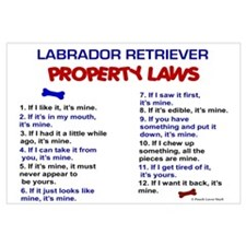 Labrador Retriever Property Laws 3 Pri