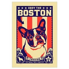 Obey the BOSTON Terrier!