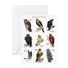Northern American Birds of Prey Greeting Card
