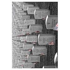 Arlington B&W Flags 11x14