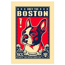 Obey the Boston! USA