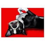 Unique Boston terrier dog Wall Art