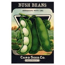 Lima Beans antique seed packe