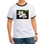 Beauty is Everywhere Ringer T