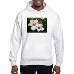 Beauty is Everywhere Hooded Sweatshirt
