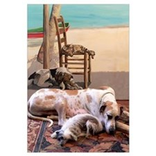 Dogs Nap by Mural