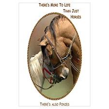 Also Ponies