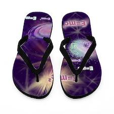 E=mc2 Flip Flops