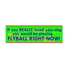 Flyball Guilt Trip Car Magnet 10 x 3