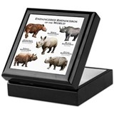 Rhinos of the World Keepsake Box