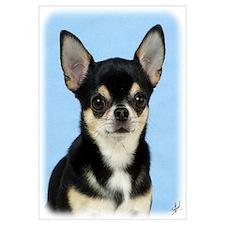Chihuahua 9W092D-057