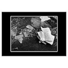 Abandoned Book