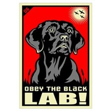 Obey the Black Lab! 06