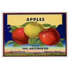 Vintage Fruit & Vegetable Lab