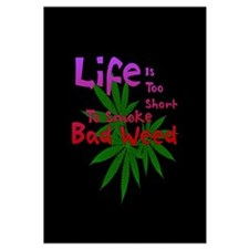 """Life and Bad Weed 20"""" X 20"""""""