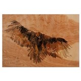 Cute Hawk Wall Art